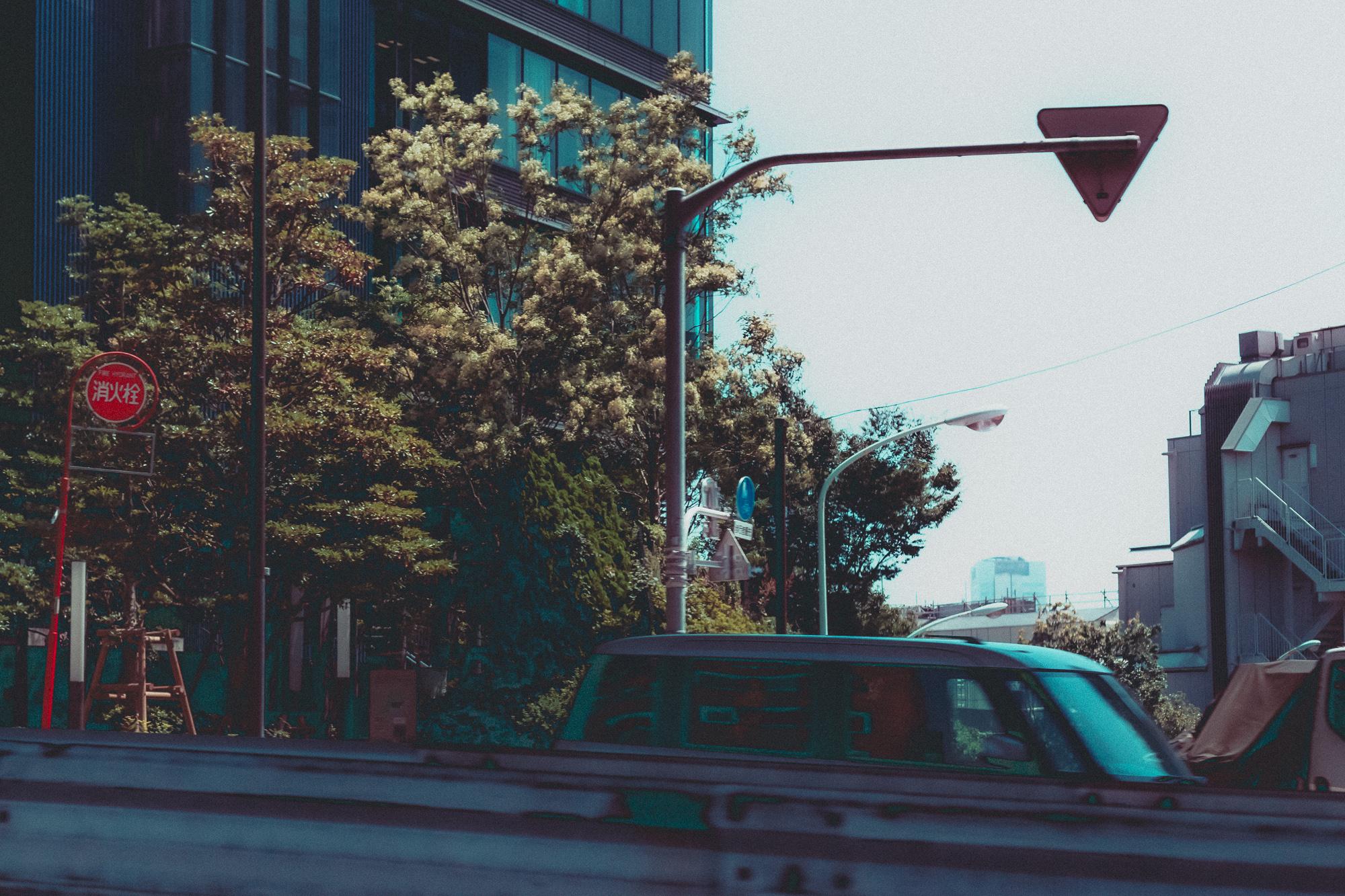 植物と都市